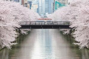 日本東京自主婚紗